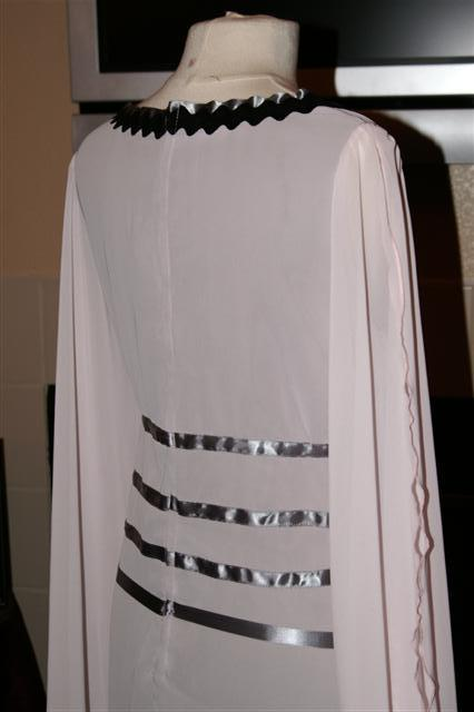 Lily Munster Costume (back detail)